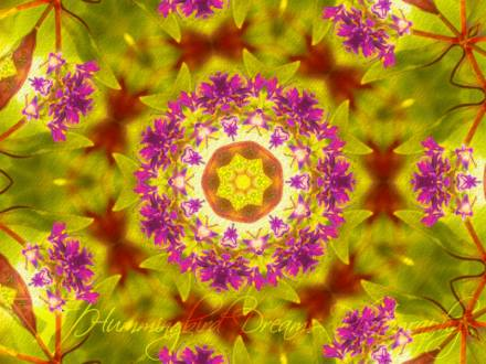 Flower Children Kaleidoscope