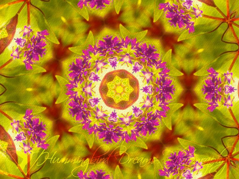 Flower Children Kaleidoscope