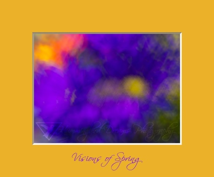 Visions of Spring